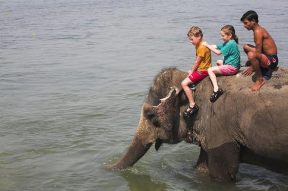 India family vacation