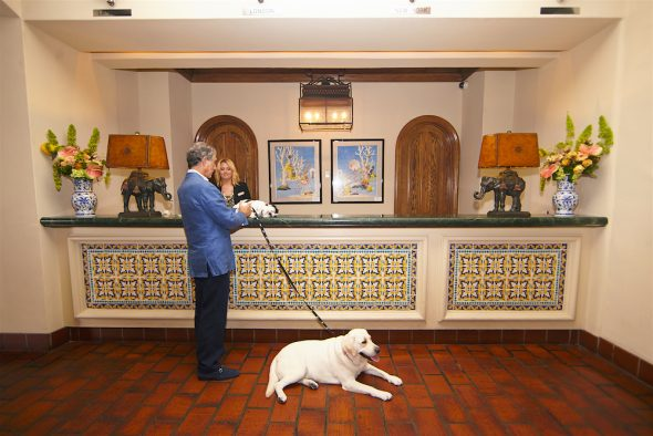 pet friendly La Valencia hotel
