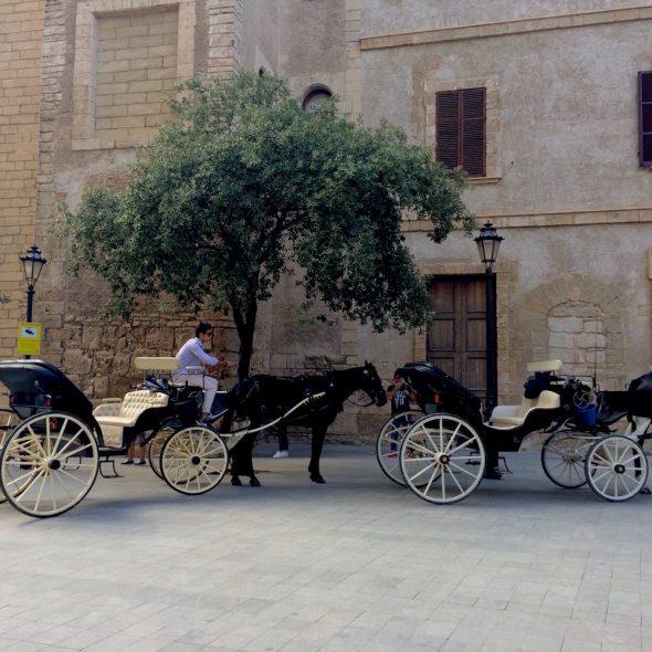 Palma Mallorca horse carriages