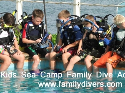 Kids Sea Camp/Family Dive Adventures