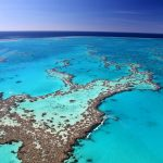 Australia_Great-Barrier-Reef-2-Copy-m9dslbx4vldbjkphy375yujkss5bkc7ywnp1x1mve8.jpg