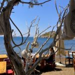 Turkey-bodrum-north-beach-590x443.jpg